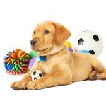 Leker bestill billig på nettet til Hund din