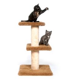 Prodotti di qualità Mobili e tiragraffi per Gatto ad un prezzo ragionevole