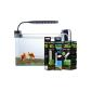 Köp Akvariebelysning på nätet hos PetsExpert