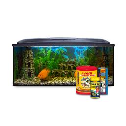 Fiskmat kvalitativa Akvarieprodukter till schyssta priser
