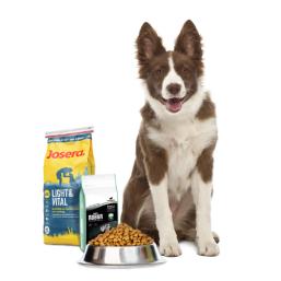 Ruokaa koirille laatutuotteita Koira edulliseen hintaan