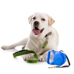 Koppel & halsband kvalitativa Hundprodukter till schyssta priser