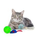 Kattleksaker beställ billigt på nätet till din Katt
