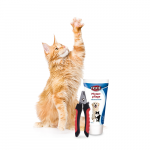 Encomende Cuidados de patas online a preços reduzidos para o seu Gato