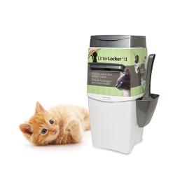 Prodotti di qualità Palette e tappeti igienici per Gatto ad un prezzo ragionevole