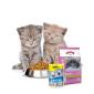 Koop online Droogvoer  goedkoop bij PetsExpert