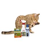 Katze Ungezieferschutz für Katzen Online Shop