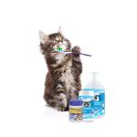 Beaphar Zahnpflege bei Katzen online bestellen