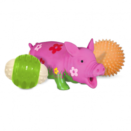 Dog toy squeakers  quality products for Dog best prices