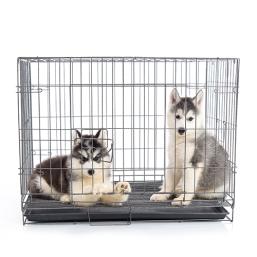Indendørs hus kvalitetsprodukter til Hund, til en fair pris