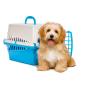 Achetez Cages de transport pour chien Plastique pas cher en ligne sur PetsExpert