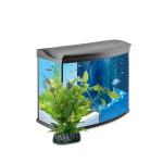 Aquariums sans armoires achat en ligne pas cher pour votre Aquariophilie