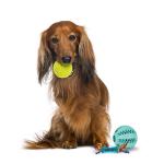 Pallot, köysilelut ja renkaat tilaa edullisesti netistä Koira