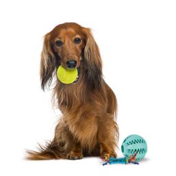Productos de calidad Bolas e anéis para Perros a precio justo