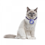 Caméras achat en ligne pas cher pour votre Chat