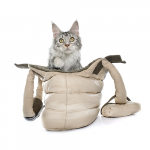 Transporttaske bestil billigt til din Kat online
