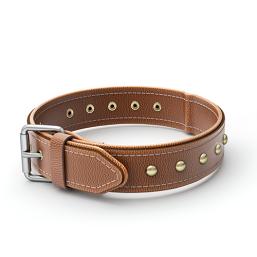 Læderhalsbånd kvalitetsprodukter til Hund, til en fair pris