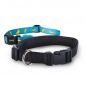 Hundehalsbånd køb det online hos PetsExpert