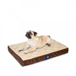 Orthopedic dog beds