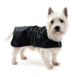 Hundejakke bestil billigt til din Hund online