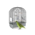 Parakitt bestill billig på nettet til Fugl din