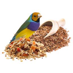 Suplementos alimentares produtos de qualidade para Pássaro a preços justos