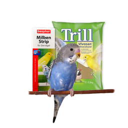 Litière et soins des produits de qualité pour Oiseau à bon prix