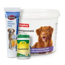 Vitaminer og mineraler kvalitetsprodukter for Hund til en rimelig pris