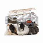 Kleintierkäfig günstig für Kleintiere