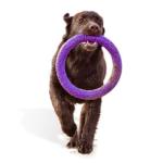 Encargue Anillos de juguete  para su Perros a bajo precio online
