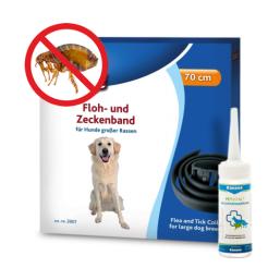 Utøyhalsbånd kvalitetsprodukter for Hund til en rimelig pris