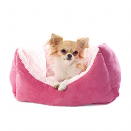 Dog beds quality products for Dog best prices