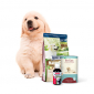 Puppies & Juniors buy cheap online at PetsExpert