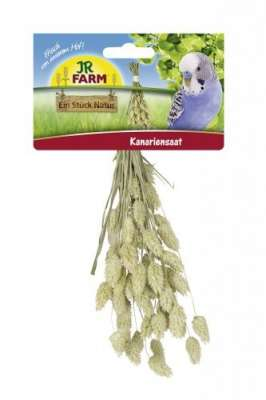 JR Farm Birds Kanariensaat  20 g