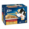 Multipack Sensations with Meat Selection in Jelly 12x100 g från Felix