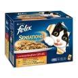 Felix Multipack Sensations with Meat Selection in Jelly 12x100 g - Kattmat med anka