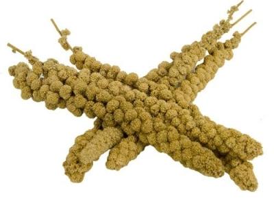 Hega Kolbenhirse Chinesisch, Gelb  15 kg