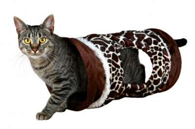 Trixie Katzen Spieltunnel Giraffe Braun 22×50 cm