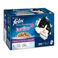 Felix Elke Dag Feest in gelei Junior 12x100 g - Kattenvoer voor jonge kat