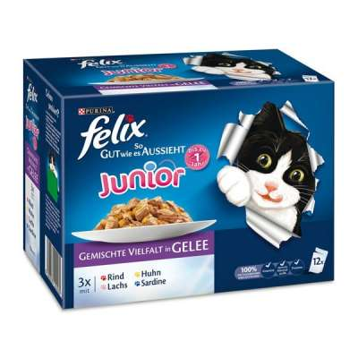 Felix Fantastic Junior Mixed selection 12x100 g