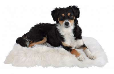 Trixie Sheepskin Cushion, white 45x45 cm