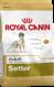 Royal Canin Breed Health Nutrition Setter Adult 3 kg negozio online