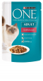 Purina ONE Adult with Beef & Carrots 85 g