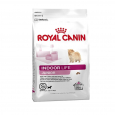 Royal Canin Lifestyle Health Nutrition - Indoor Life Junior Small bestill til gode priser