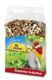 JR Farm Birds Germination Seeds for Large Parakeets 1 kg