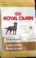 Royal Canin Breed Health Nutrition Labrador Adult Sterilised 3 kg - Dog food for large breeds