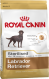 Royal Canin Breed Health Nutrition Labrador Retriever Sterilised 3 kg verkkokauppa