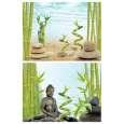 Tetra DecoArt Poster Buddha&Bamboo 450x600 mm vorteilhaft
