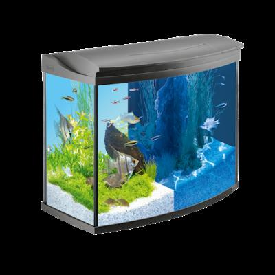 Tetra AquaArt LED Aquarium-Komplettset 130 l Schwarz