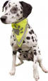 Trixie Safety Neckerchief, neon yellow XS-S
